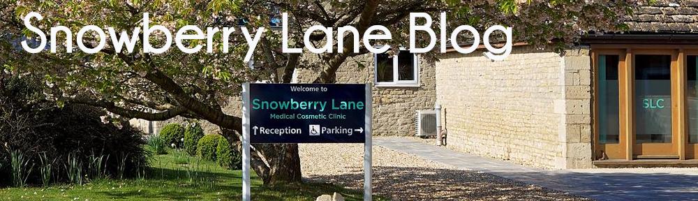 Snowberry Lane Blog